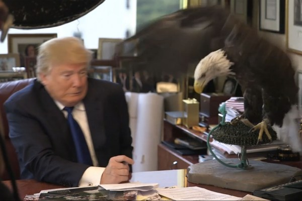 donald-trump-eagle